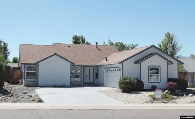 Carson City Single Family Home For Sale: 995 Haystack Drive