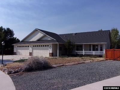 Minden NV Single Family Home Auction: $377,150