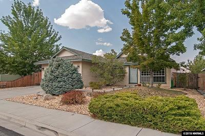 Carson City Single Family Home For Sale: 4070 Quinn Dr.