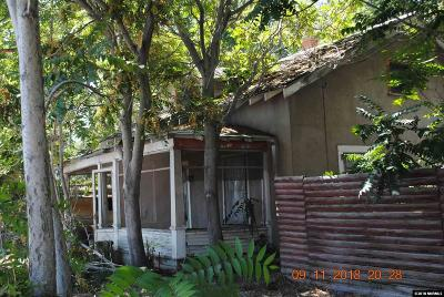 Lovelock Single Family Home For Sale: 1245 Cornell Avenue