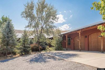 Washoe County Single Family Home For Sale