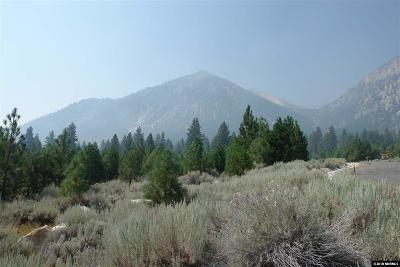 Gardnerville Residential Lots & Land For Sale: 229 Job's Canyon