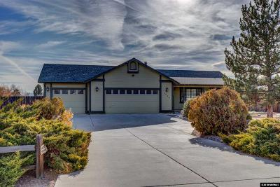Minden NV Single Family Home New: $479,000