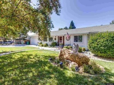 Washoe County Single Family Home For Sale: 14345 Chamy Drive