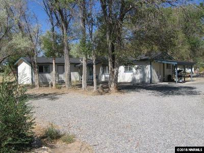 Minden NV Single Family Home New: $525,000