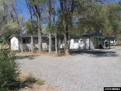 Minden NV Single Family Home For Sale: $525,000