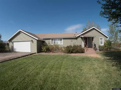 Fernley Single Family Home For Sale: 325 Stock Lane