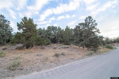 Reno Residential Lots & Land For Sale: 21545 Sazarac Rd.