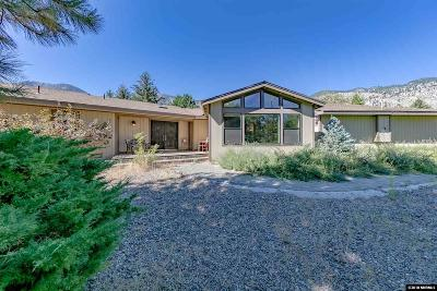 Gardnerville Single Family Home For Sale: 241 Sierra Shadows Ln