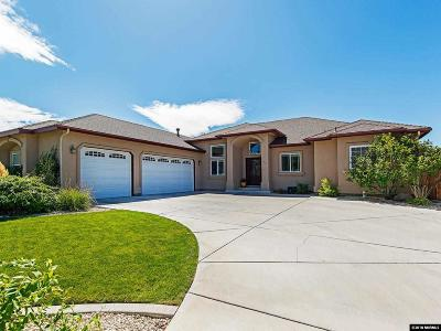 Carson City Single Family Home For Sale: 300 Riparian Wy