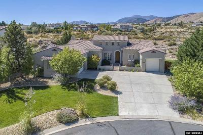 Reno, Sparks, Carson City, Gardnerville Single Family Home For Sale: 2937 Flint Ridge Court