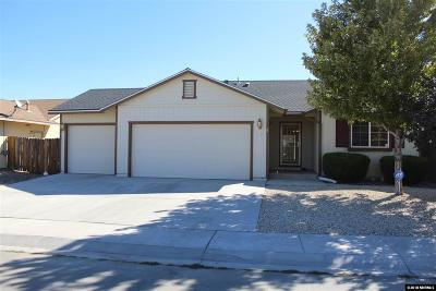 Fernley Single Family Home For Sale: 145 Relief Springs Road