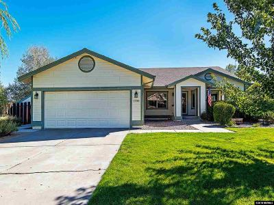 Reno, Sparks, Carson City, Gardnerville Single Family Home New: 17000 Pine Valley Drive