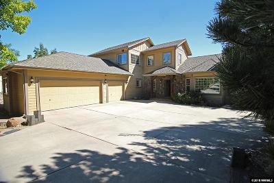 Washoe County Single Family Home For Sale: 80 Chinchilla Lane