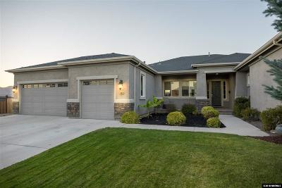 Washoe County Single Family Home New: 385 Sunset Springs Lane