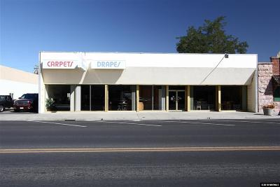 Yerington NV Commercial For Sale: $250,000
