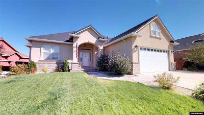 Fernley Single Family Home New: 246 Mary Lou Lane