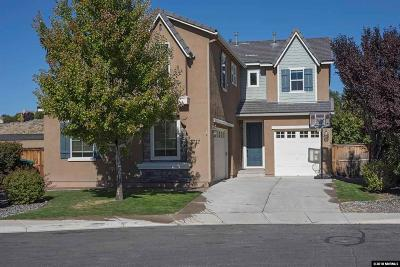 Washoe County Single Family Home New: 2717 Dome Court