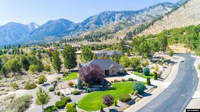 Gardnerville Single Family Home New: 197 Taylor Creek