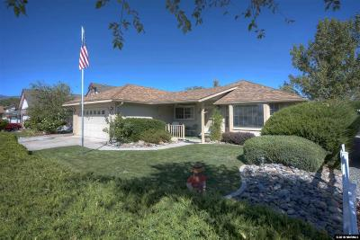 Reno, Sparks, Carson City, Gardnerville Single Family Home New: 3976 Steamboat Dr