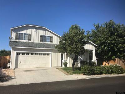 Reno Single Family Home New: 9955 Vintage Dr
