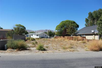 Yerington Residential Lots & Land For Sale: 509 S Whitacre