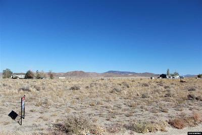 Yerington Residential Lots & Land For Sale: 28 Andes Lane