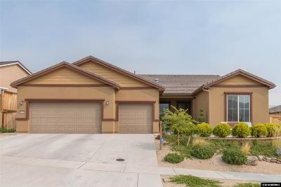 Reno Single Family Home For Sale: 1128 Dutch Hollow Trail