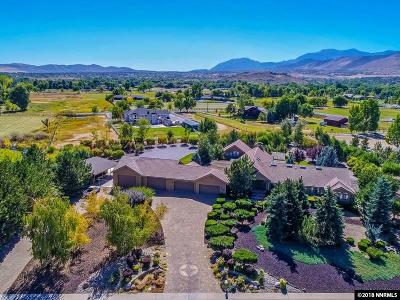 Washoe County Single Family Home For Sale: 690 Meadow Vista