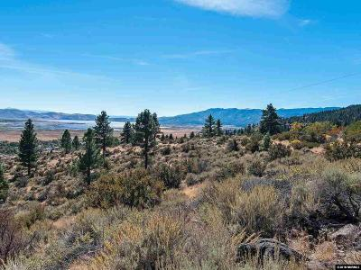 Washoe Valley Residential Lots & Land For Sale: Joy Lake Rd