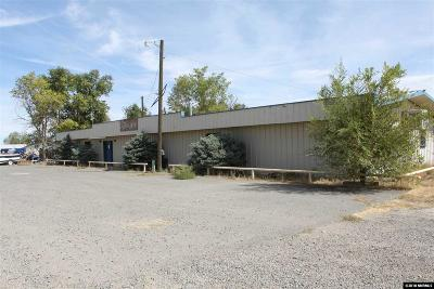 Crescent Valley NV Commercial For Sale: $243,000
