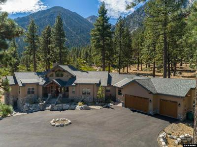 Gardnerville Single Family Home For Sale: 201 Stony Creek Road