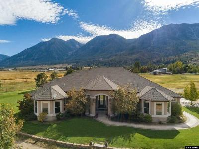 Gardnerville Single Family Home For Sale: 1237 Jones Ranch Road