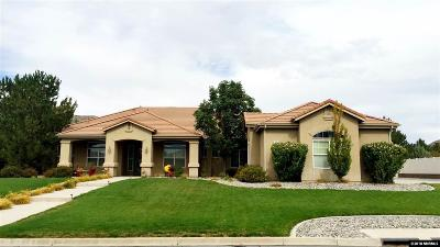 Washoe County Single Family Home For Sale: 205 Mystic Mountain Dr.