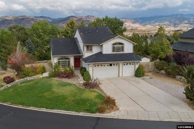 Washoe County Single Family Home For Sale: 14300 Ghost Rider