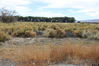 Yerington Residential Lots & Land For Sale: 19 Kathleen Way