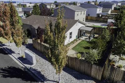 Reno Single Family Home For Sale: 9295 Red Baron Boulevard