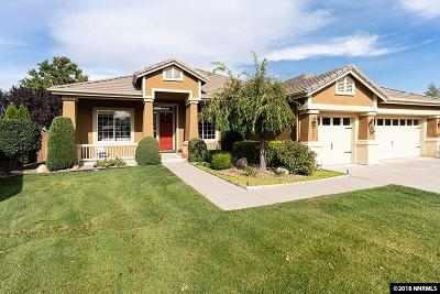 Washoe County Single Family Home For Sale: 220 Stonewall Court