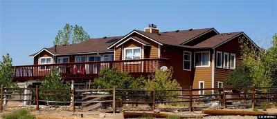 Washoe County Single Family Home For Sale: 5200 Twin Springs Rd