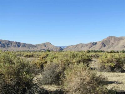 Yerington Residential Lots & Land For Sale: 999 Hwy 208