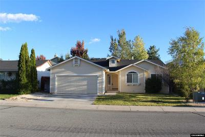 Carson City Single Family Home For Sale: 857 Meadow Vista Drive