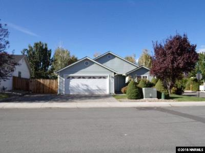 Gardnerville Single Family Home For Sale: 1355 Brooke Way