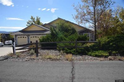 Carson City Single Family Home For Sale: 2175 Kelvin Road