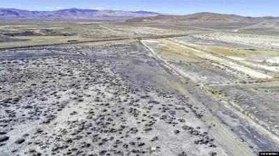 Yerington Residential Lots & Land For Sale: Hwy 95a
