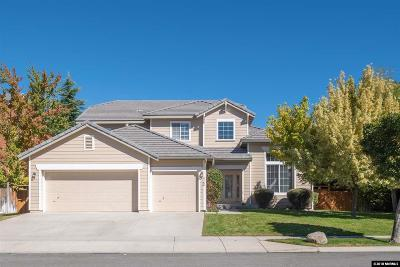 Washoe County Single Family Home New: 3166 Cobrita Ct.