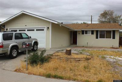 Carson City Single Family Home For Sale: 3478 Indian Drive