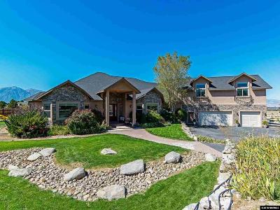 Gardnerville Single Family Home For Sale: 1918 Tedsen
