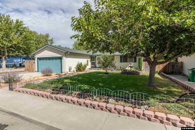 Washoe County Single Family Home For Sale: 3375 Kings Row