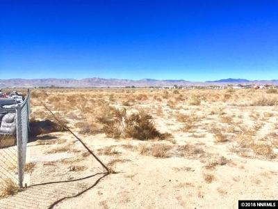 Yerington Residential Lots & Land For Sale: 9 Wyonna