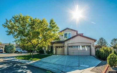 Washoe County Single Family Home For Sale: 1611 Box Canyon